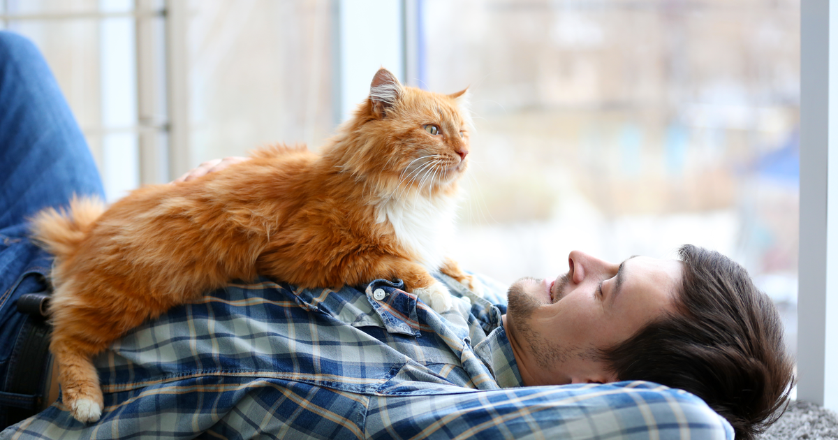 Man lying with a orange cat on his chest